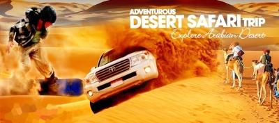 Evening Desert Safari DH99