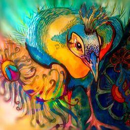 Peacock Walk
