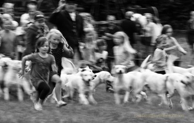 Children run with the pack, summer in Devon
