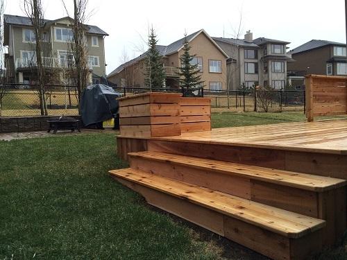Small Cedar steps
