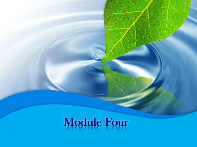 Intro to MODULE FOUR