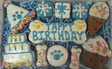 Yappy Birthday Blue Gift Box