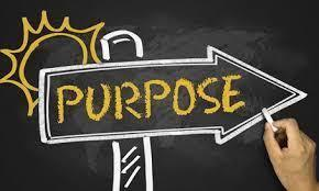 From Panic to Purpose