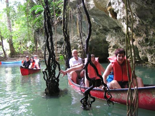 Jungle Adventure Tours