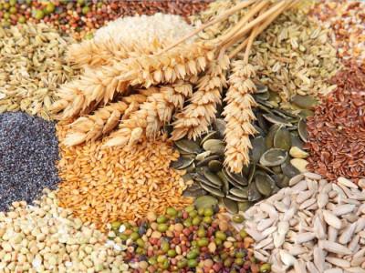 Saludables y sabrosas alternativas para dietas especiales bajos en calorias y grasas
