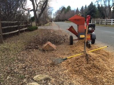 Tree & Shrub Pruning, Plant & Fertilizations