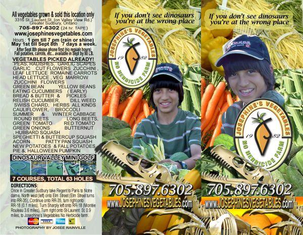 dinosaurs,no herbicide farm,vegetables in sudbury,farm market, sudbury, eat local sudbury,