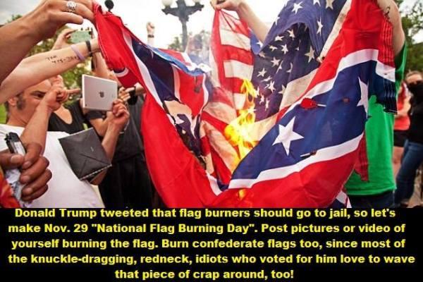 Burn The Flag
