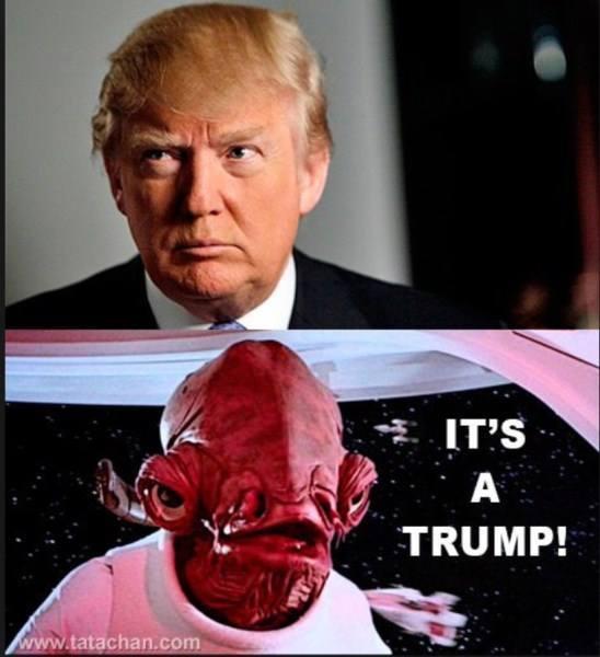 It's A Trump!