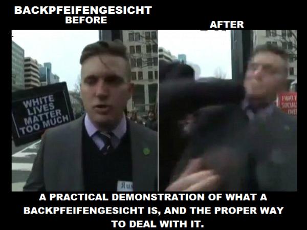 Backpfeifengesicht, explained.