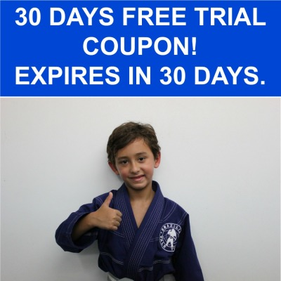 Martial Arts A Key To Success In Children
