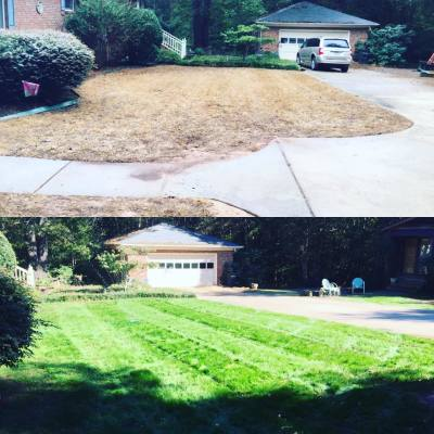 Cochran Lawn Renovation