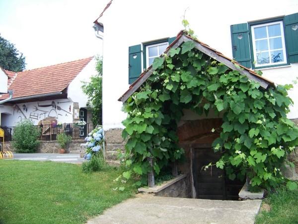 Abgang zum Weinkeller/Entrance Wine Cellar