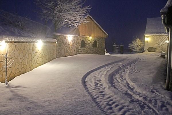 Wintermorgen/Winter morning