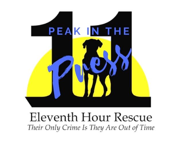Eleventh Hour Rescue