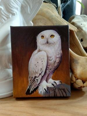 Snowy Owl 4 x 5 Acrylic Painting