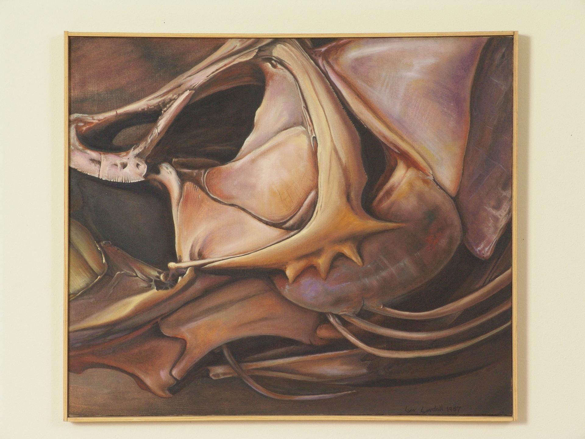 Fish Skull #1