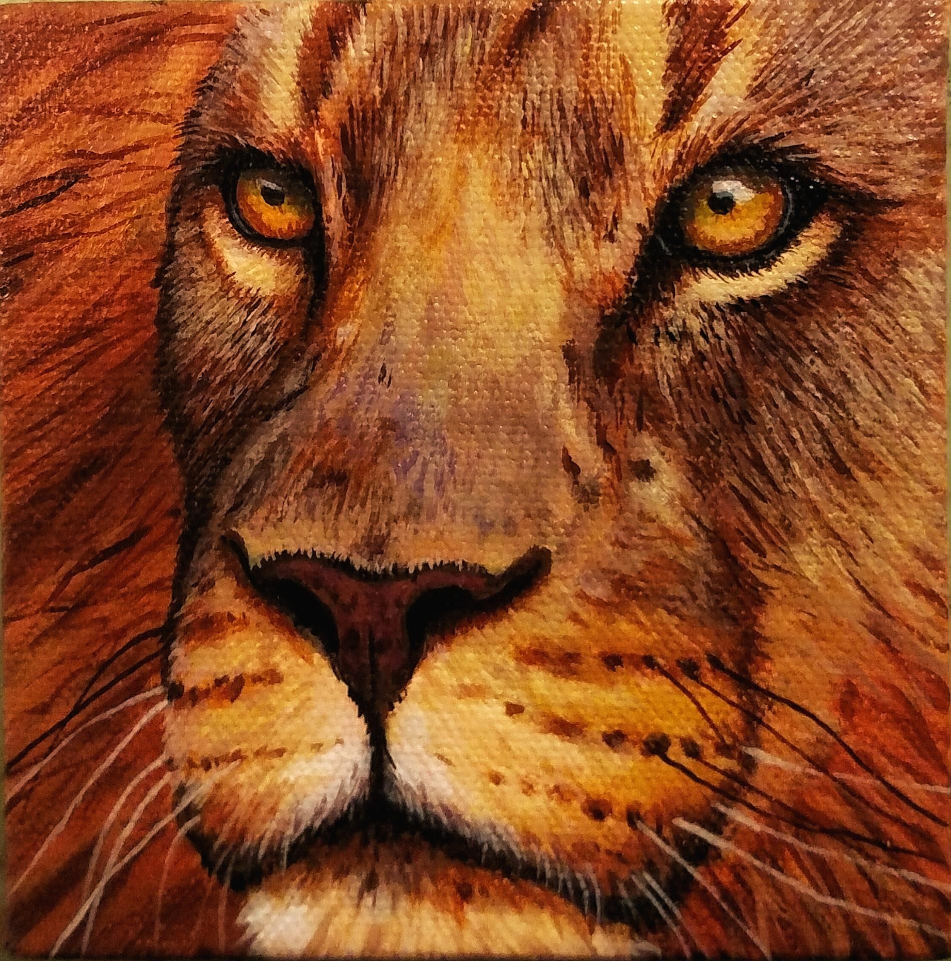 """4"""" x 4"""" Lion Face"""