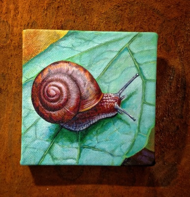 "4"" x 4"" Snail Painting"