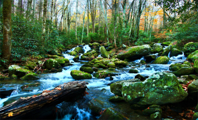 Noontootla Creek G.A