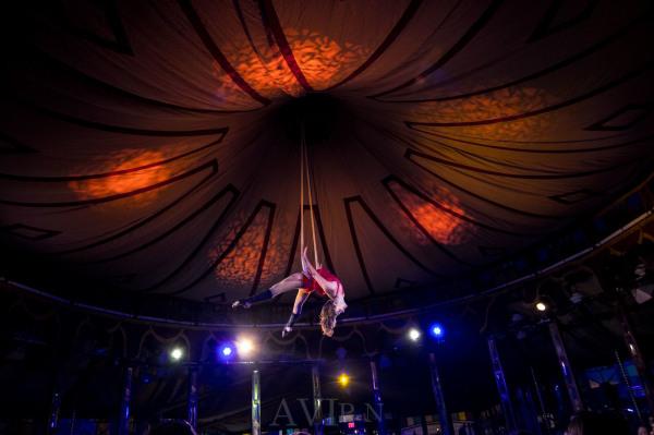 Cabinet of Wonders  - Rochester Fringe Festival Headliner