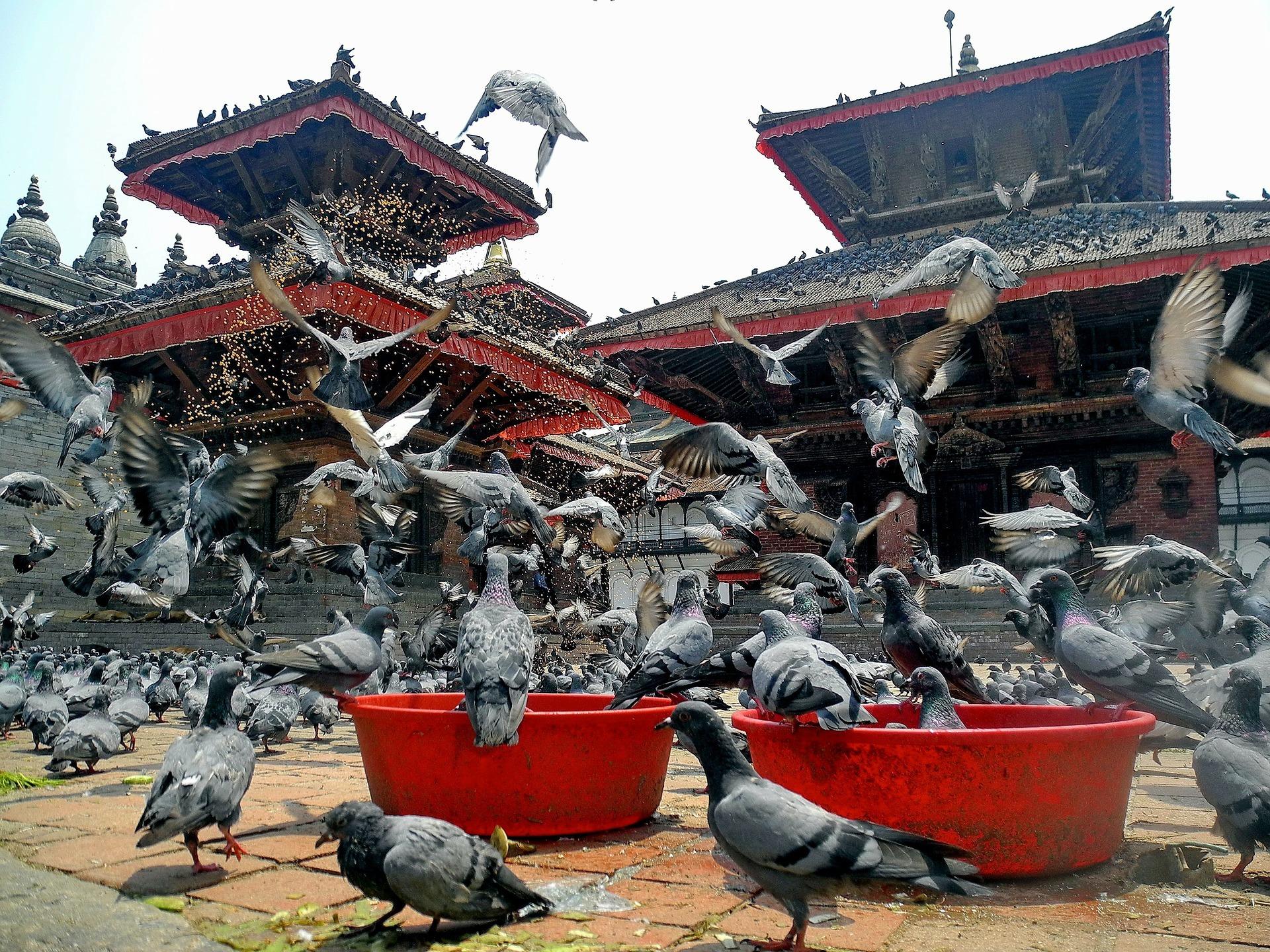 kathmandu-96564_1920