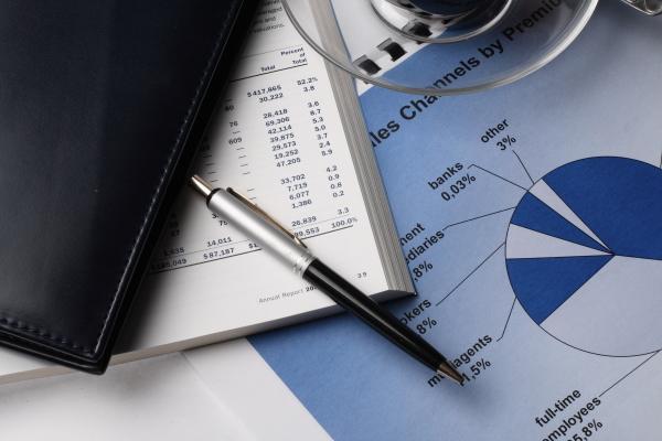 Medical Plan Auditing