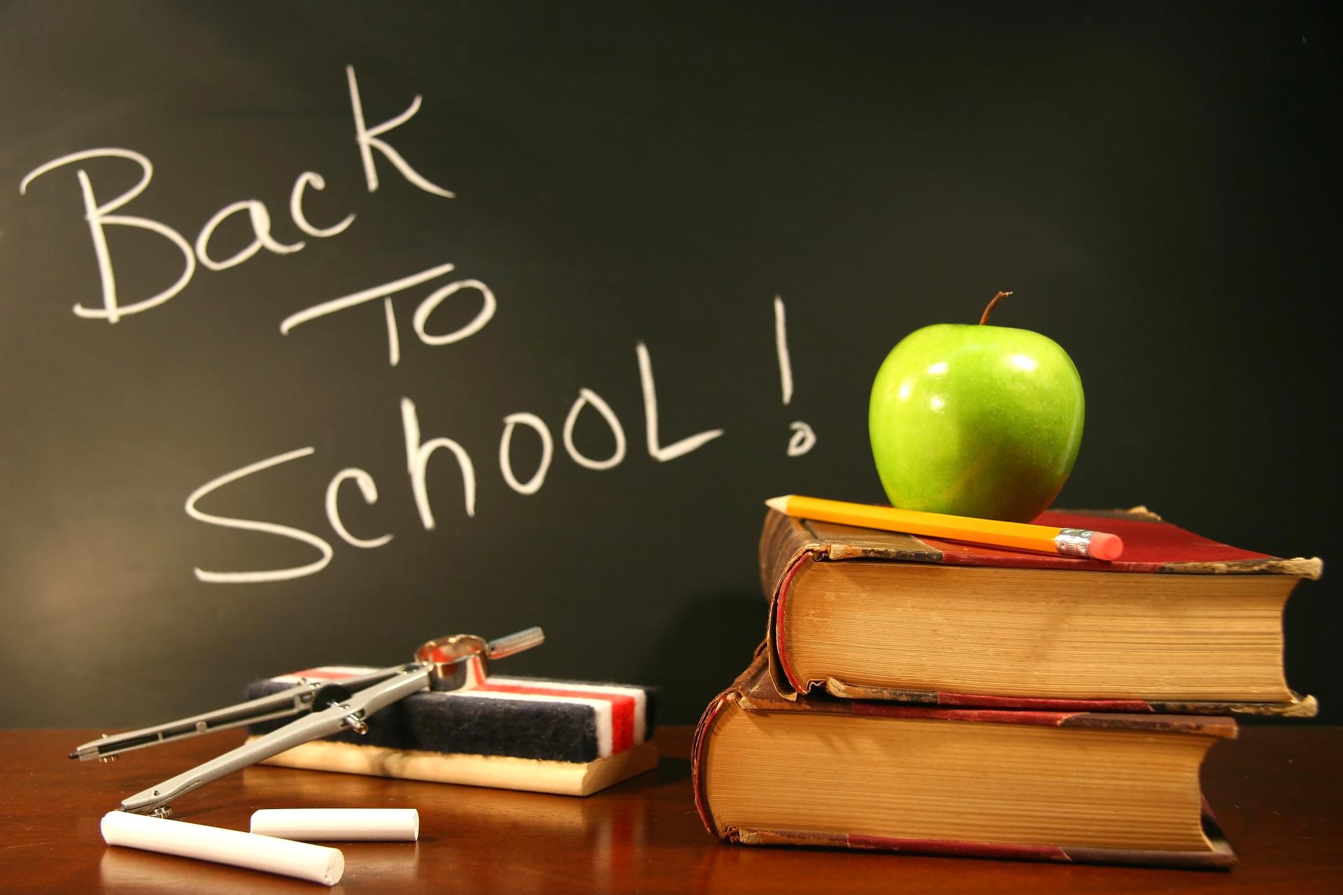 Schools Aren't Providing Your Children Louse-Free Classrooms