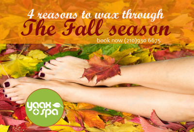 4 Reasons to Wax through the Fall Season