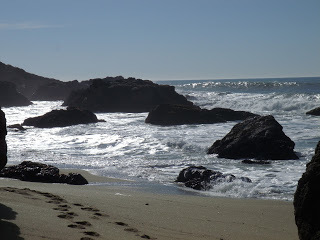 Muir Woods beach
