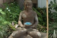 Good Karma Garden, Zen, Safe Place