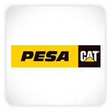 Pesa CAT