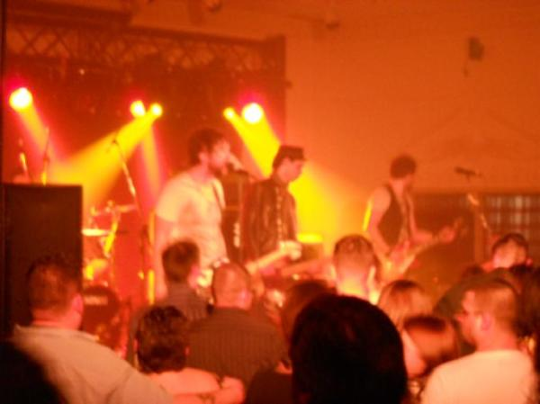 The Trews Live