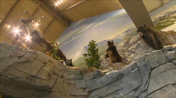 Cabela's North custom mural