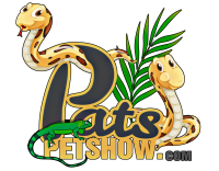 Pat's Pet Show | Home