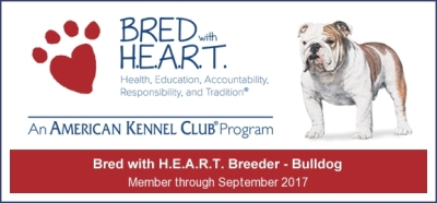 AKC Bred With Heart