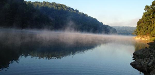 Lakeshore, off logging trails