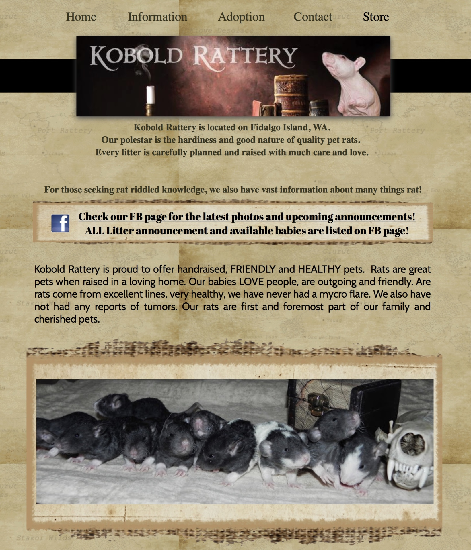 Kobold Rattery