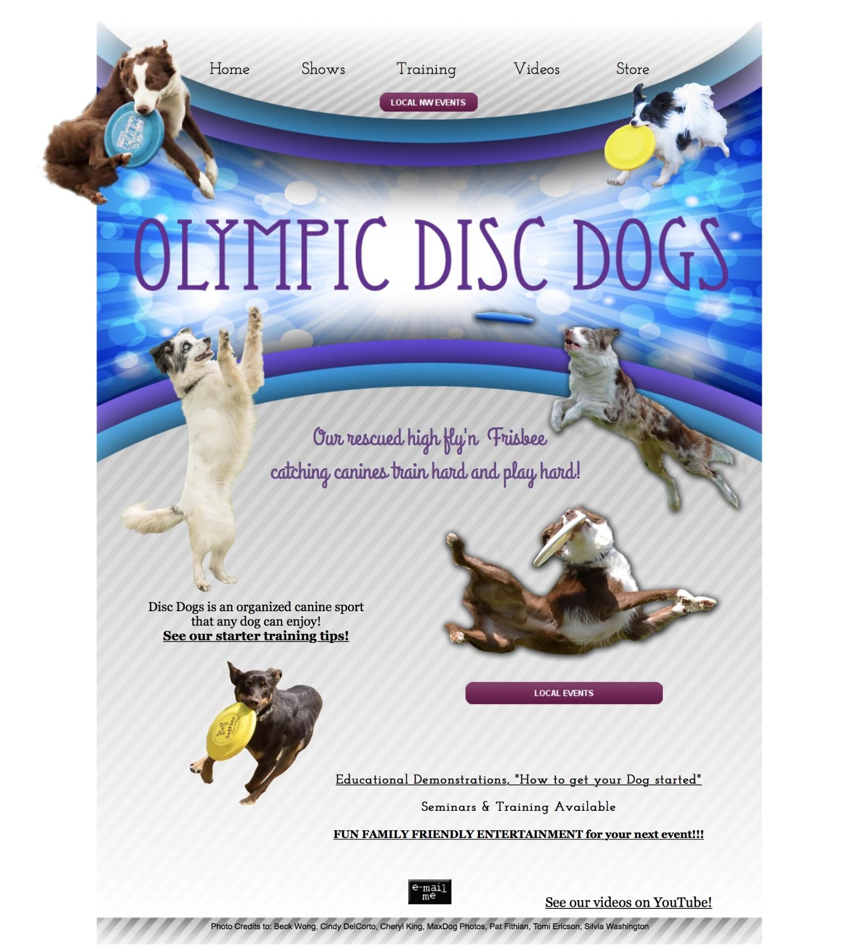 DiscDoggin.com