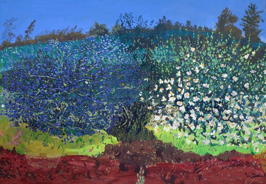 Community Bloom (Ceanothus, Holly Oak, Matilija)