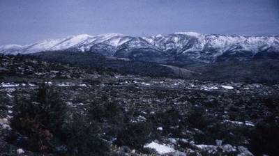 Peak Perfect: Mount Cithaeron