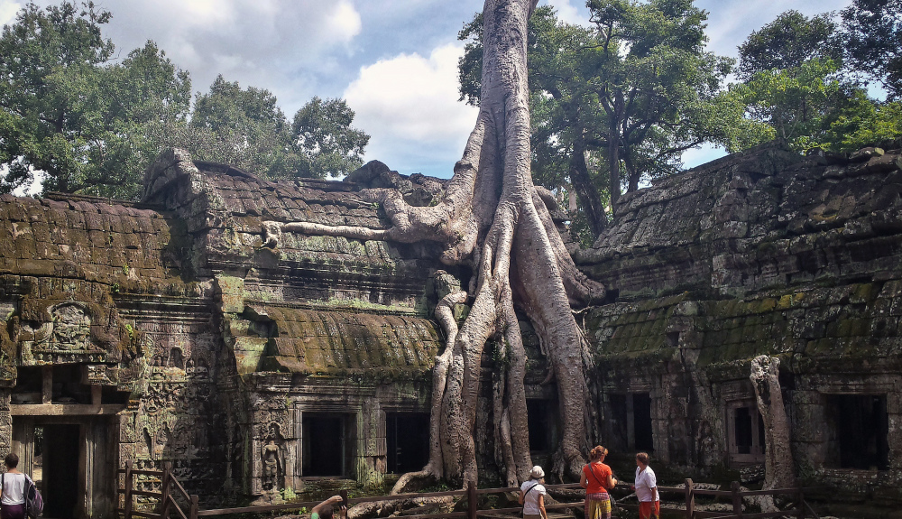 The famous tree roots in the Ta Promh temple in Cambodia is a great photo.