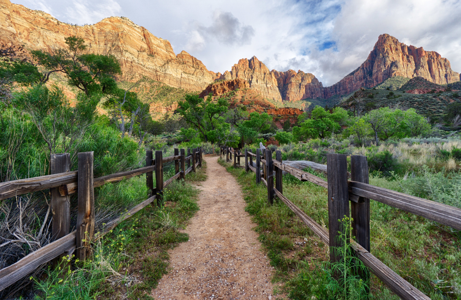 Trail leading down to a beautiful creek in the south campground in zion national park