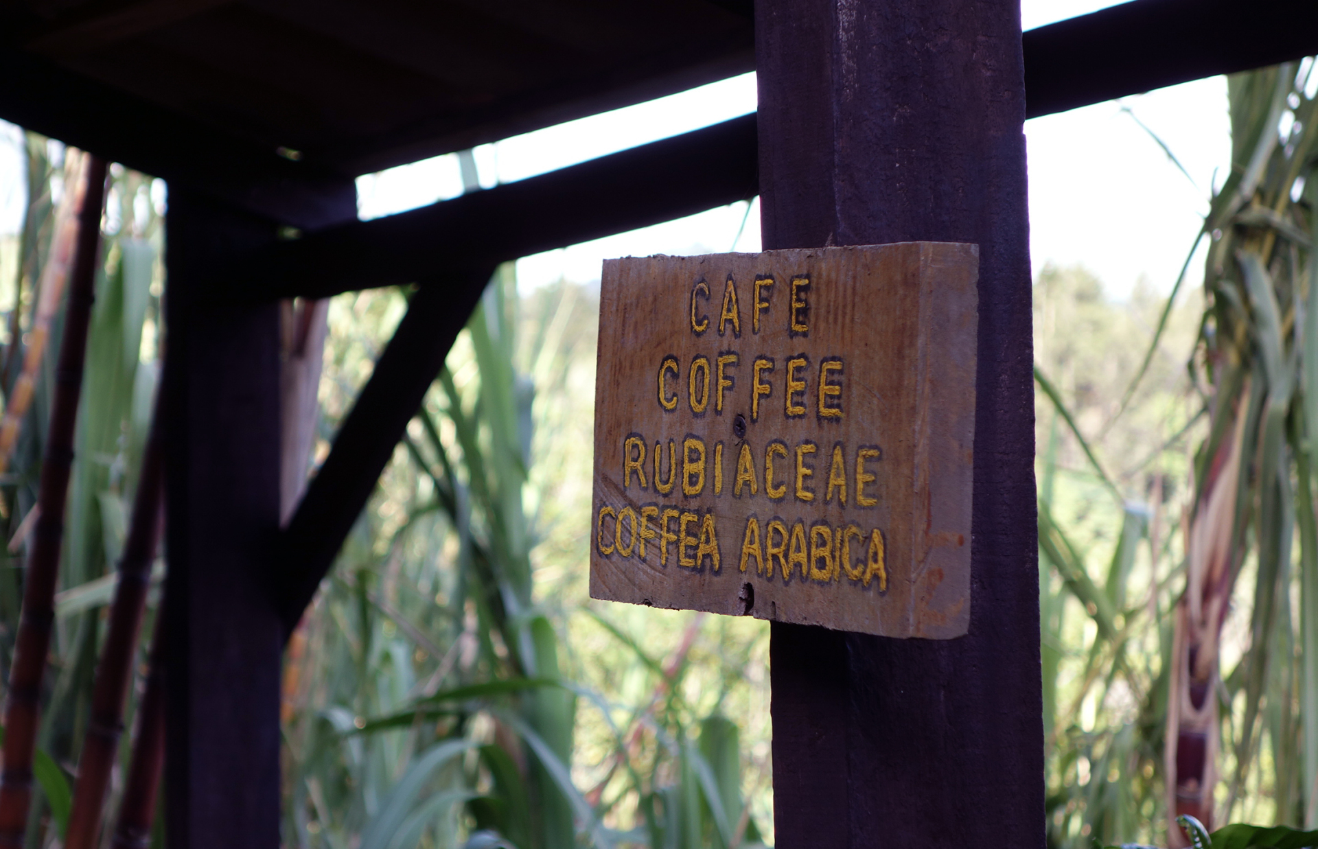 a sign on the don juan coffee tour saying coffee