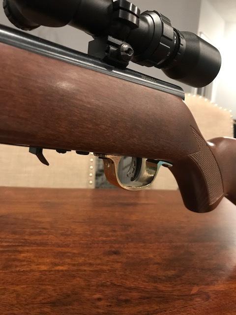 Trigger guard on gun