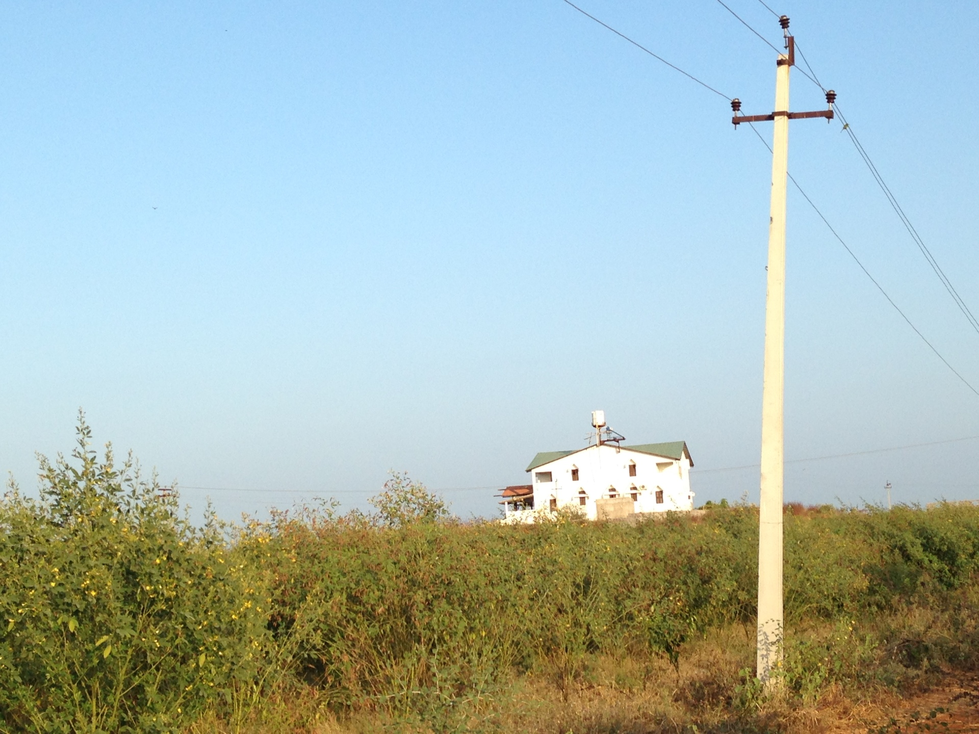 Raghumohan Kaka's farm house