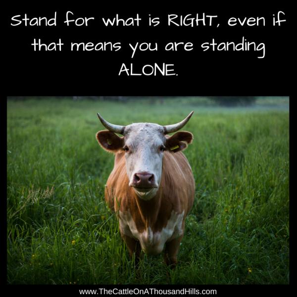 I stand alone.