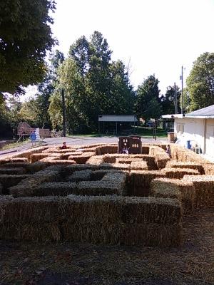 Hay Bale Maze