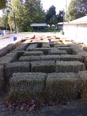 Hay Bale Maze 2