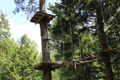 On tree fun & adventure park